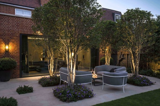 uplit trees and planting garden lighting