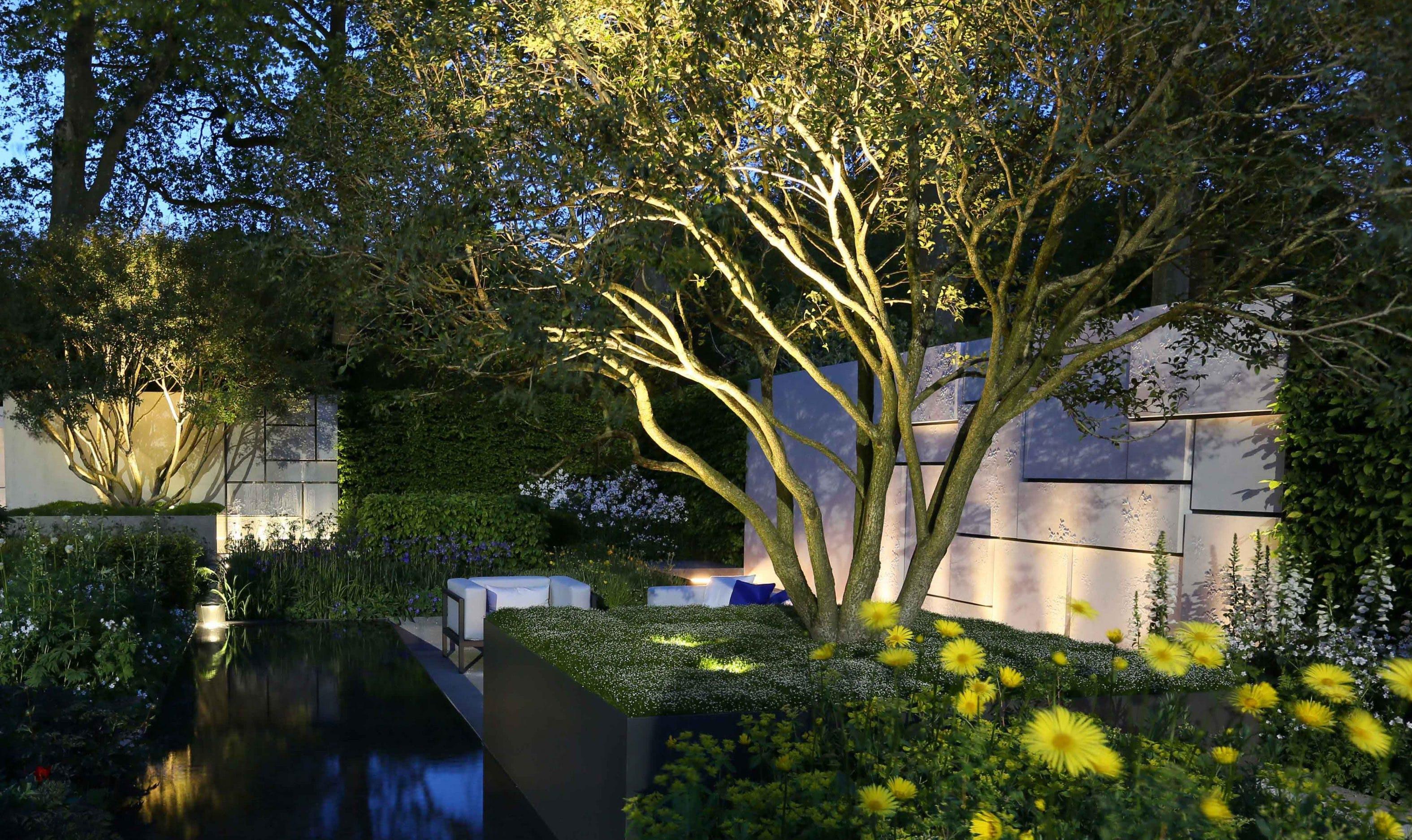sot and hard landscape garden